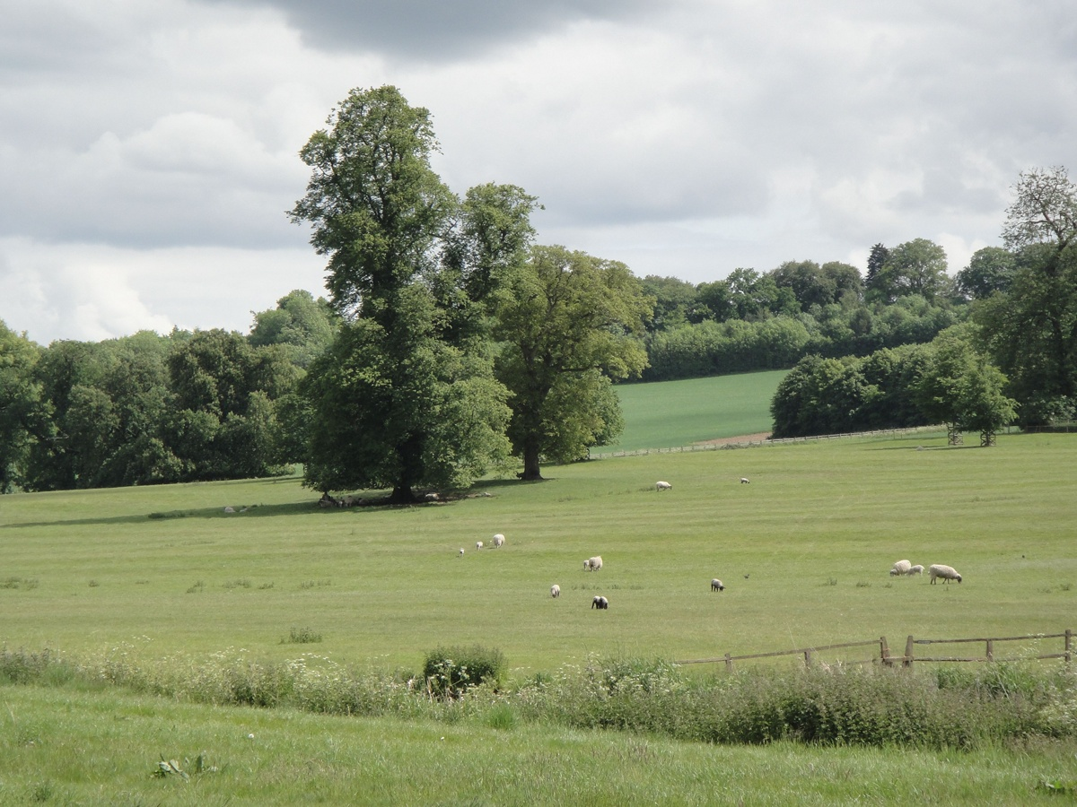Austenland Countryside 1