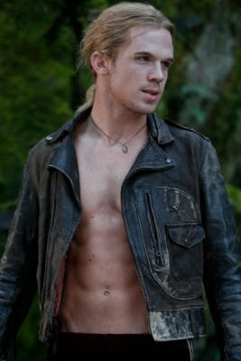 Cam Gigandet as James